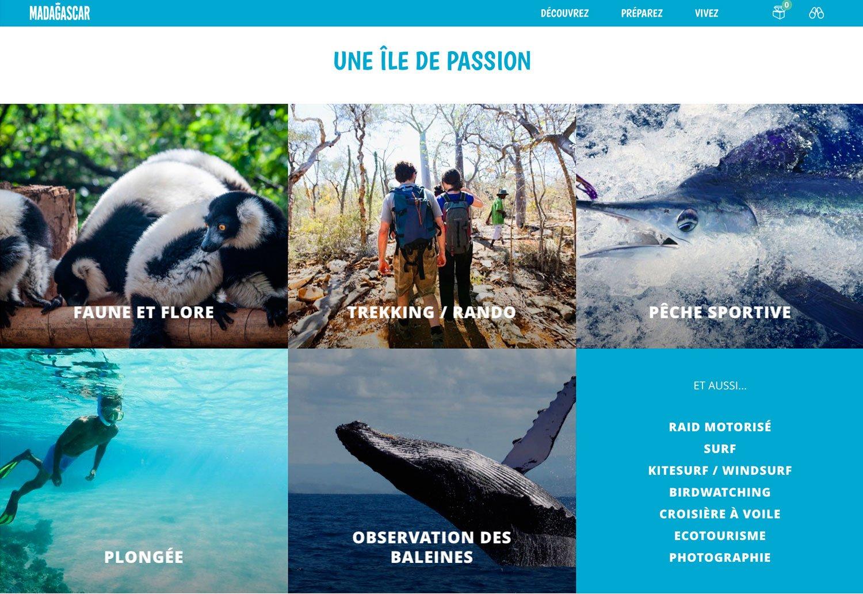 ARTICLE-Madagascar online !