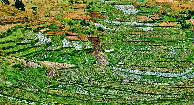 Colourful Fianarantsoa