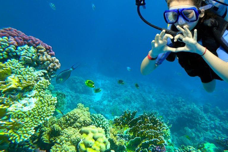 ACCUEIL-De nouveaux guides pour les activités touristiques