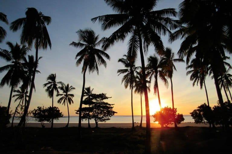 ACCUEIL-39ème anniversaire l'indépendance des Comores