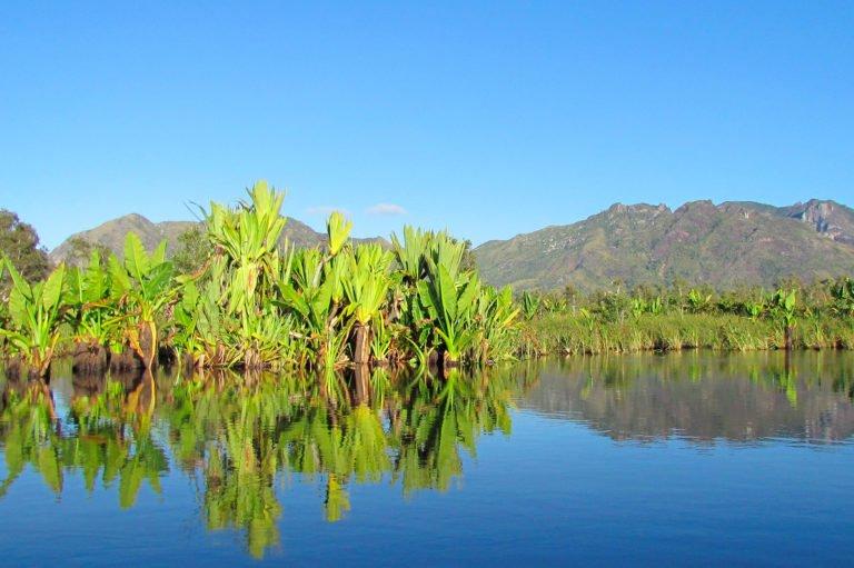 ACCUEIL-Planète Héritage & Zone Australe à Nosy Be