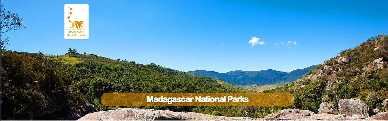 ARTICLE-Madagascar en ligne