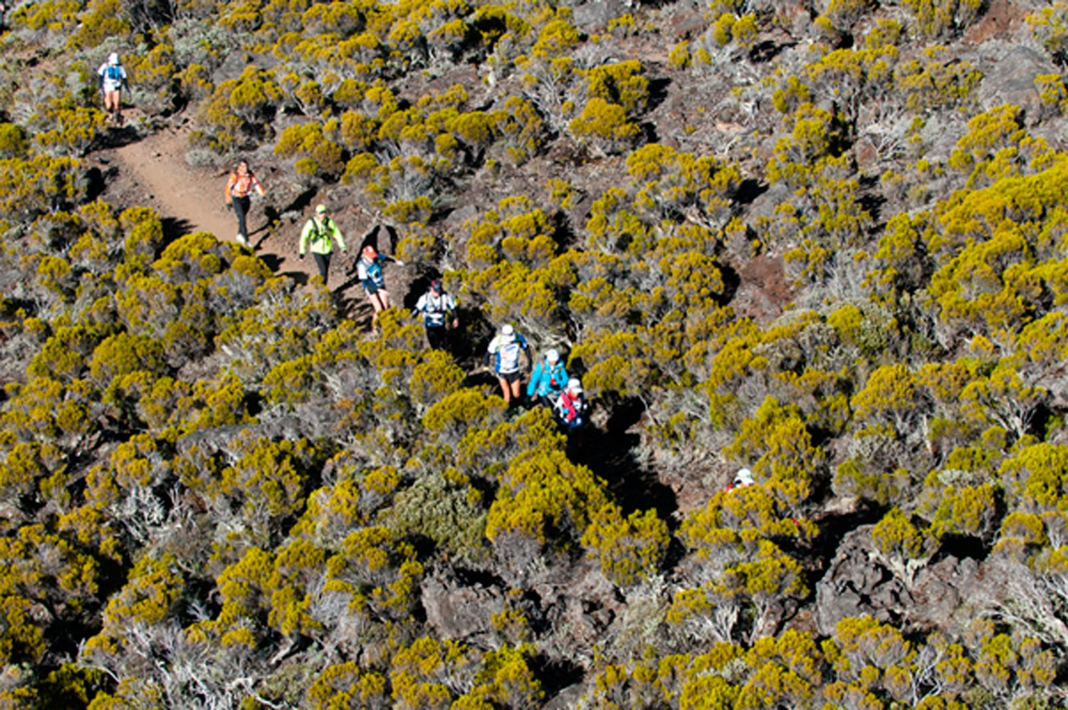 ARTICLE-The grand raid on Reunion Island concludes the 2014 Ultra Trail World Tour
