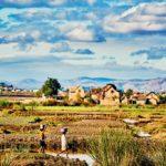 Madagascar - Paysage rural enfants
