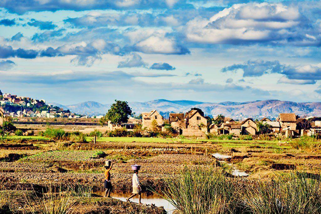 Madagascar - Paysage rural