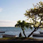 ile maurice arbre bateau mer homme