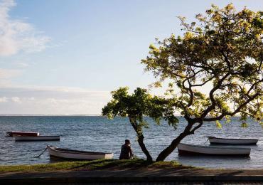 Mayotte - Bord d'océan pêcheur arbre bateaux