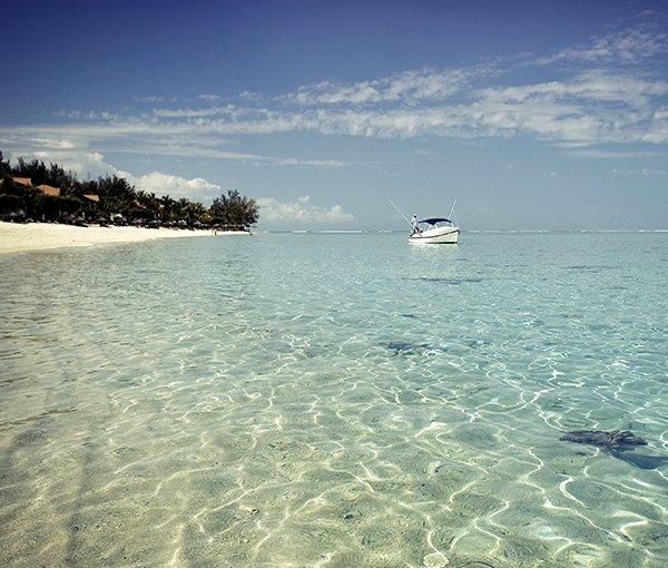 i-v-ecotourisme-boat