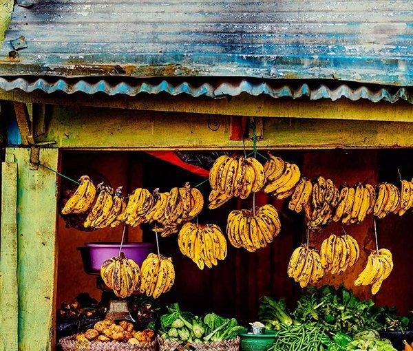 i-v-ecotourisme-madagascar-banane