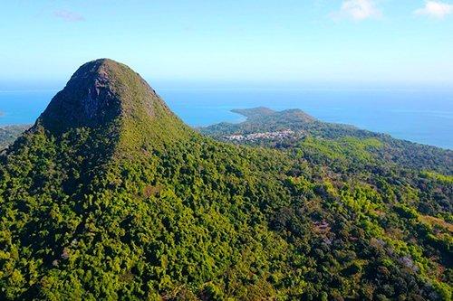 i-v-ecotourisme-montagne-foret