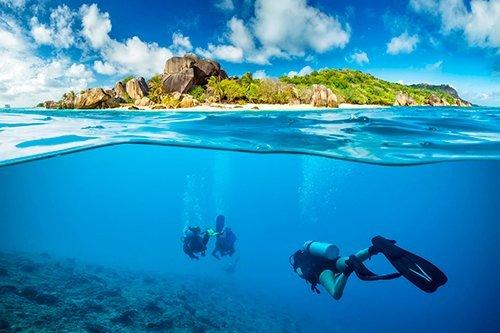 i-v-ecotourisme-plongee-vacance